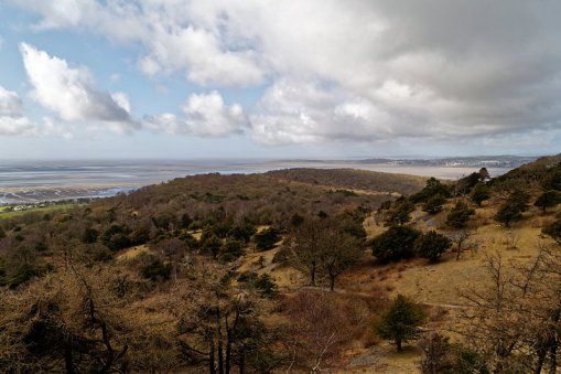 View from Arnside Knott Wood with Grange-Over-Sands in the distance on the right