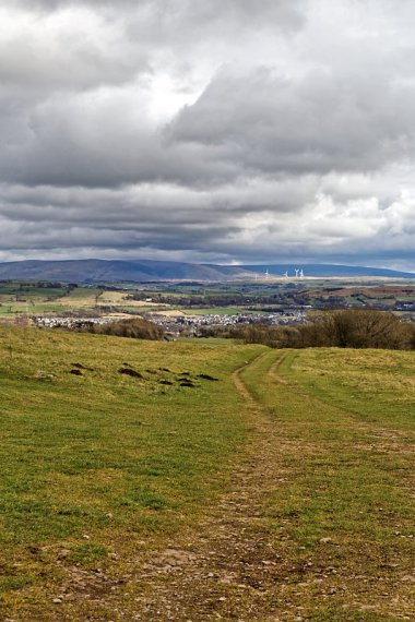 Looking towards Kendal from Gamblesmire Lane
